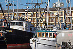 Port of Port Townsend, Commercial Basin, fishing boats, Puget Sound, Jefferson County, Washington State, Pacific Northwest, salmon fishing boats,