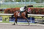 July 12, 2015: Two-year old, Formal Summation (FL), a 75-1 long shot, with jockey Luis Castillo up, goes wire to wire to break his maiden at Gulfstream Park  in Hallandale Beach, Florida.    Liz Lamont/ESW/CSM