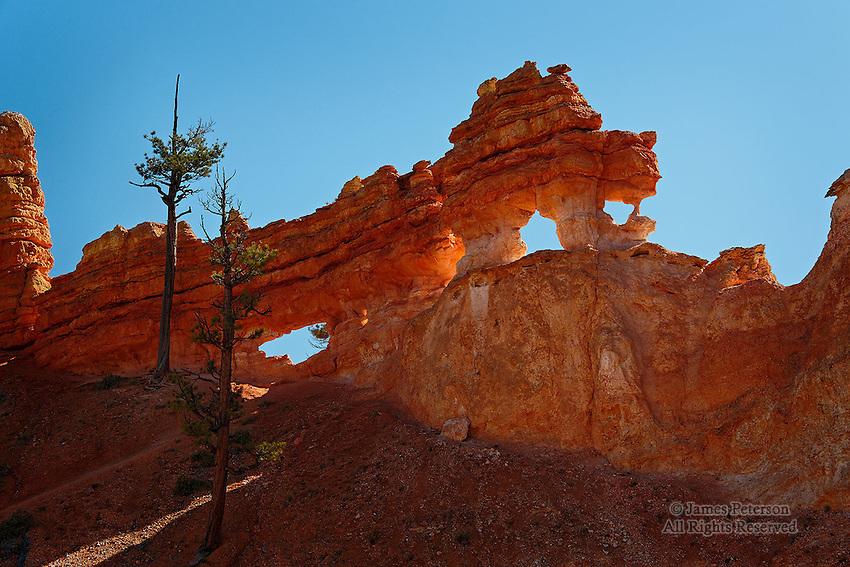 The Dragon, Bryce Canyon, Utah