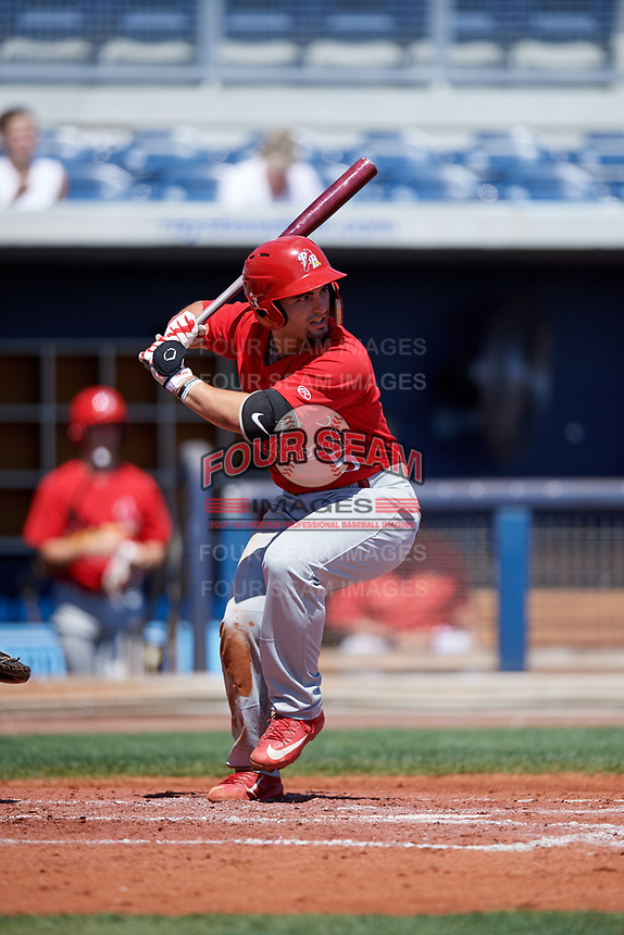 Palm Beach Cardinals first baseman Chris Chinea (5) at bat during a game against the Charlotte Stone Crabs on April 12, 2017 at Charlotte Sports Park in Port Charlotte, Florida.  Palm Beach defeated Charlotte 8-7 in ten innings.  (Mike Janes/Four Seam Images)