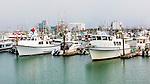 Westport Harbor, Washington.  Charter fishing fleet lies at dockside on Washington State's pacific ocean coast.