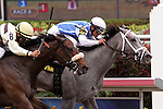 March 29, 2014:  #6  In Tune (KY) with jockey Javier Castellano duels with #8 House Rules (KY) to win the G2 Gulfstream Oaks at Gulfstream Park in Hallandale Beach, FL.  Liz Lamont/ESW/CSM