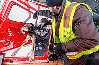 Veterinarian Mike Walker loads a dropped dog to pilot Wes Erb at the ghost-town checkpoint of Iditarod on Saturday, March 10th during the 2018 Iditarod Sled Dog Race -- Alaska<br /> <br /> Photo by Jeff Schultz/SchultzPhoto.com  (C) 2018  ALL RIGHTS RESERVED