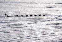 M Williams Mushes on Yukon Rvr @ Galena 2000 Iditarod AK