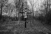 A cross raised at the place of 200 years old fallen chapel of St, Nicolas. Trees and grass cover what once was street center of Bartolomevka village.