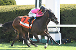 April 09, 2021: Toby's Heart #7, ridden by Javier Castellano wins the TVG Limestone Turf Sprint Stakes on the Maker's Mark Mile undercard at Keeneland Race Course in Lexington, Kentucky on April 09, 2021. Jessica Morgan/Eclipse Sportswire/CSM