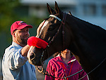 Doug O'Neill, trainer of Derby winner I'll Have Another, stands with Lava Man on May 17, 2012 at Pimlico Race Course in Baltimore, Maryland