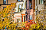 Fall foliage frames the Victorian brownstones in the Back Bay neighborhod of Boston, MA, USA