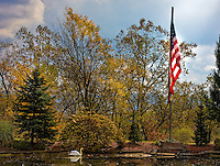 Pond with American flag and swan in rural West Virginia