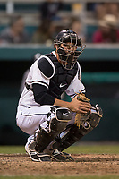 Modesto Nuts catcher Garrett Kennedy (29) during a California League game against the Lake Elsinore Storm at John Thurman Field on May 12, 2018 in Modesto, California. Lake Elsinore defeated Modesto 4-1. (Zachary Lucy/Four Seam Images)