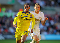 Saturday, 06 October 2012<br /> Pictured: of Swansea of Reading<br /> Re: Barclays Premier League, Swansea City FC v Reading at the Liberty Stadium, south Wales.<br /> Michu