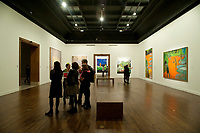 Vernissage of Peter Doig exhibition at Montreal's Museum of Fine Arts, May 1st, 2014.<br /> <br /> Photo  : Agence Quebec Presse - Philippe Nguyen