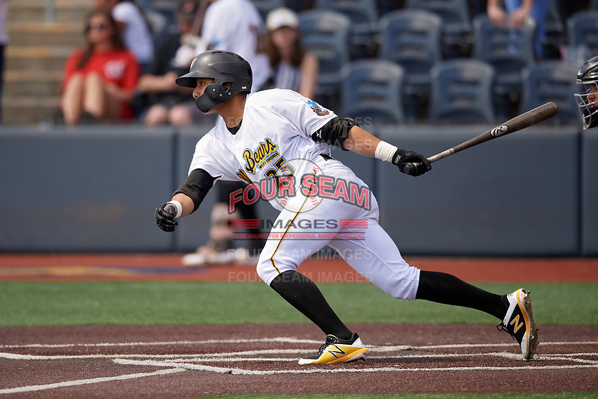 West Virginia Black Bears Fernando Villegas (25) bats during a NY-Penn League game against the Batavia Muckdogs on August 29, 2019 at Monongalia County Ballpark in Morgantown, New York.  West Virginia defeated Batavia 5-4 in ten innings.  (Mike Janes/Four Seam Images)