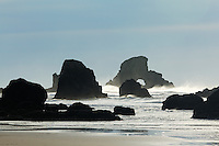 Sea stacks on Oregon Coast, Ecola State Park, Oregon, USA