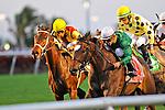 06 February 2010: Tottie with jockey Jose Lezcano wins the  Suwannee River Stakes at Gulfstream Park in Hallandale Beach, FL.