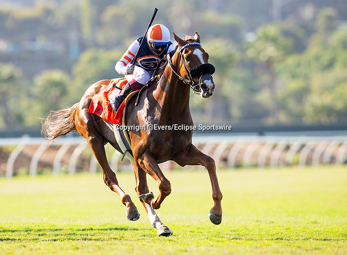 AUG 22: Red King, and jockey Umberto Rispoli hit the front in the Breeders' Cup win and you're in Grade II Del Mar Handicap with jockey Umberto Rispoli aboard, in Del Mar, California on August 22, 2020. Evers/Eclipse Sportswire/CSM