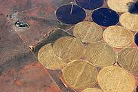 Felder im Kreis: AFRIKA, SUEDAFRIKA, 21.12.2007: Runde Felder in der Wueste Karoo, Bewaesserung durch den Oranje River, Afrika, Suedafrika, Orange free, State, Gariepdam, Wirtschaft, Landwirtschaft, Agrar, Agrarwirtschaft, feld, felder, bewirtschaften, Kreis, Kreise, rund, kreisfoermig, Wueste, Landschaft, trocken, bewaessern, bewaesserung, Oranje, Fluss, Flussbewaesserung, Anbau, Anbaugebiet, Muster, Getreide, Korn, Struktur, skurril, Luftbild, Draufsicht, Luftaufnahme, Luftansicht, Luftblick, Flugaufnahme, Flugbild, Vogelperspektive Aufwind-Luftbilder