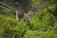 Two people flying through the canopy of trees in the rainforest while Ziplining on the Big island with Kohala zipline
