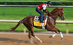 Dullahan, trained by Dale Romans and to be ridden by Kent Desormeaux, works out in preparation for the 138th Kentucky Derby at Churchill Downs in Louisville, Kentucky on May 3, 2012