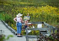 Plein air artist painting a field of flowers..