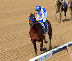 Drefong (no. 10) wins the Grade 1 Forego Stakes August 26 at Saratoga Race Course, Saratoga Springs, NY.  The winner, ridden by Mike Smith and trained by Bob Baffert, won by  4 lengths in the seven furlong race on the dirt against nine opponents.  (Bruce Dudek/Eclipse Sportswire)