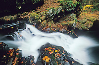 Waterfall at Van Campens Glen, National Recreation Area, Delaware Water Gap, New Jersey