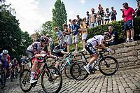 Peter Sagan (SVK/BORA - hansgrohe) up the infamous Muur van Geraardbergen / Kapelmuur<br /> <br /> 17thBenelux Tour 2021 (2.UWT)<br /> (Final) Stage 7: from Namur to Geraardsbergen (178km)<br /> <br /> ©kramon