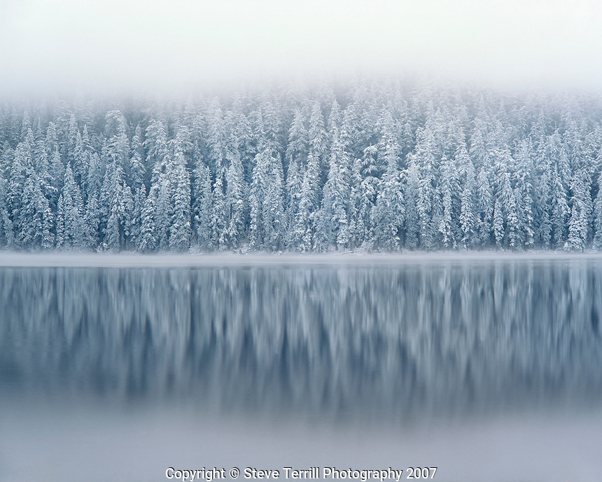 Fog rising above snow-flocked douglas fir trees reflecting in Lost Lake in Mt. Hood National Forest, Oregon