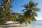 Seychelles, Island Mahe, Baie Lazare, Anse Gaulettes: beach