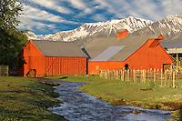 Farmland near Joseph with barn, stream and horse. Oregon