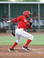 Jose Acosta - 2019 AZL Reds (Bill Mitchell)