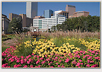 """Denver skyline from Civic Center Park. From John's 5th book: """"Denver Colorado: A Photographic Portrait.""""<br /> Private photo tours of Denver and nearby mountains by John. Click the above CONTACT button for inquiries. Denver tours."""