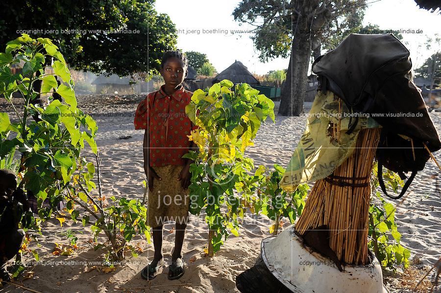 """Afrika Sambia Barotseland Mongu, Lozi Dorf Ilundu , kleine Jatropha Pflanzen    .Africa ZAMBIA Barotseland Mongu Lozi village Ilundu .  [ copyright (c) Joerg Boethling / agenda , Veroeffentlichung nur gegen Honorar und Belegexemplar an / publication only with royalties and copy to:  agenda PG   Rothestr. 66   Germany D-22765 Hamburg   ph. ++49 40 391 907 14   e-mail: boethling@agenda-fototext.de   www.agenda-fototext.de   Bank: Hamburger Sparkasse  BLZ 200 505 50  Kto. 1281 120 178   IBAN: DE96 2005 0550 1281 1201 78   BIC: """"HASPDEHH"""" ,  WEITERE MOTIVE ZU DIESEM THEMA SIND VORHANDEN!! MORE PICTURES ON THIS SUBJECT AVAILABLE!! ] [#0,26,121#]"""
