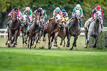 ELMONT, NY - OCTOBER 08: The field coming around the turn for home, during the 1st Running of The Belmont Turf Sprint Invitational, on Jockey Club Gold Cup Day at Belmont Park on October 8, 2016 in Elmont, New York. (Photo by Douglas DeFelice/Eclipse Sportswire/Getty Images)