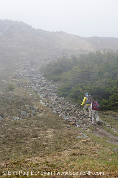 Hikers in fog ascending Gorge Brook Trail, near the summit of Mount Moosilauke, in Benton, New Hampshire USA during the summer months.