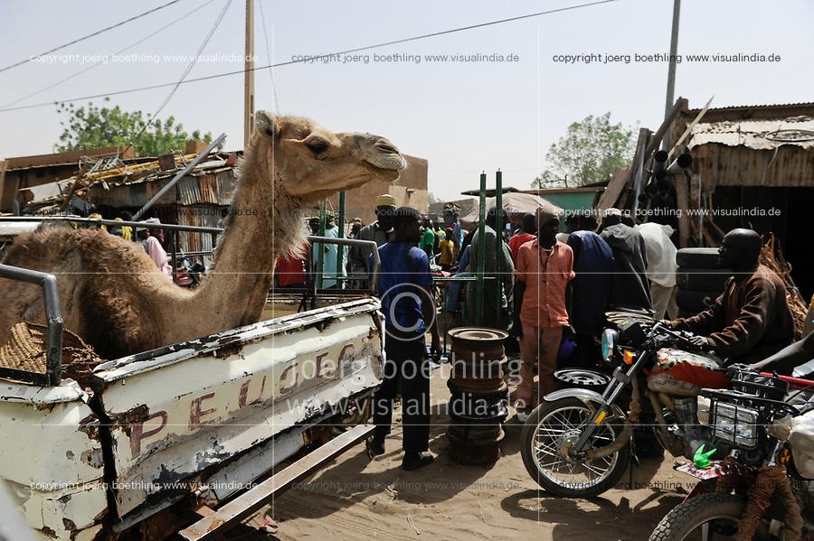 NIGER Zinder, market, camel on Peugeot pick-up / NIGER Zinder, Markt, Kamel auf Pick-up
