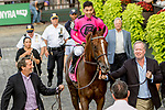 September 29, 2018 : Channel Maker, ridden by Jose Ortiz, wins the Joe Hirsch Turf Classic on Jockey Club Gold Cup Day at Belmont Park on September 29, 2018 in Elmont, New York. Sue Kawczynski/Eclipse Sportswire/CSM