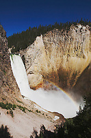Lower Falls with rainbow, Canyon Village, Yellowstone National Park, Wyoming, USA