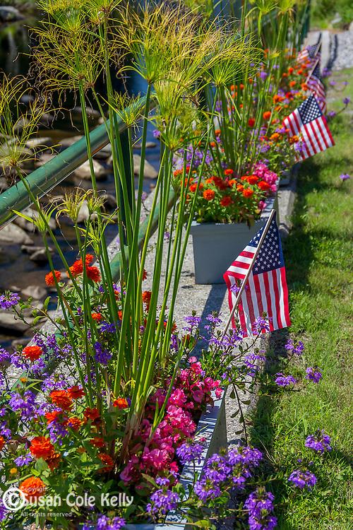 Patriotic flowers in Weston, Vermont, USA