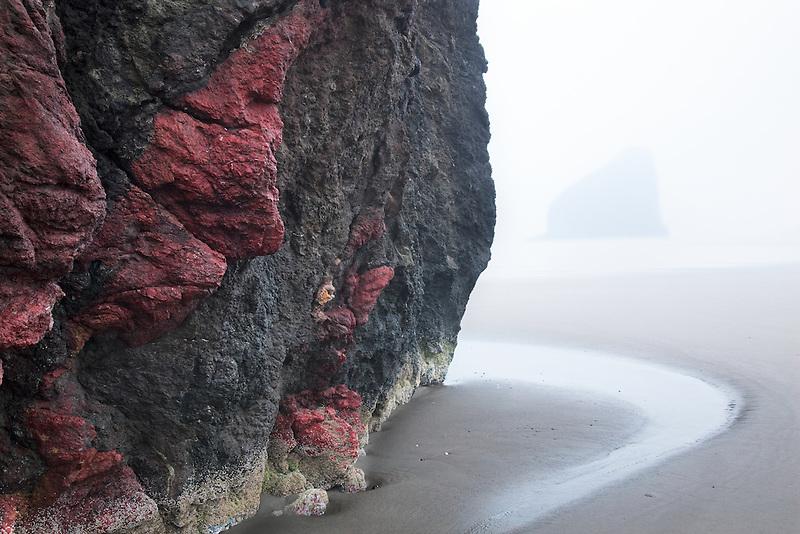 Colorful seastack and low tide at Cape Sebastion. Oregon
