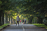 WEATHER PICTURE WALES<br />A man rollerblades on the tree-covered path during one of the hottest days in September, by Swansea seafront, Wales, UK. Wednesday 14 September 2016