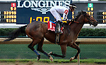 May 30, 2015  Alsvid (jockey Chris Landeros) wins the 27th running of the G3 Aristides Stakes at Churchill Downs. Owner Black Hawk Stable (James Rogers), trainer Chris A. Hartman. By Officer x Reagle Mary (Afternoon Deelites) ©Mary M. Meek/ESW/CSM