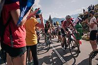 """Tomasz Marczynski (POL/Lotto-Soudal) coming through """"Dutch Corner"""" (#7) on Alpe d'Huez<br /> <br /> Stage 12: Bourg-Saint-Maurice / Les Arcs > Alpe d'Huez (175km)<br /> <br /> 105th Tour de France 2018<br /> ©kramon"""