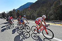 14th March 2020, Paris to Nice cycling tour, final day, stage 7;  DE GENDT Thomas (BEL) of LOTTO SOUDAL, ALAPHILIPPE Julian (FRA) of DECEUNINCK - QUICK - STEP,  EDET Nicolas (FRA) of COFIDIS, BETTIOL Alberto (ITA) of EF PRO CYCLING and PARET PEINTRE Aurelien (FRA) of AG2R LA MONDIALE in action during stage 7 of the 78th edition of the Paris - Nice cycling race, a stage of 166,5km with start in Nice and finish in Valdeblore La Colmiane on March 14, 2020 in Valdeblore La Colmiane, France