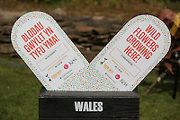 Pictured: Grow Wild banners Saturday 13 August 2016<br />