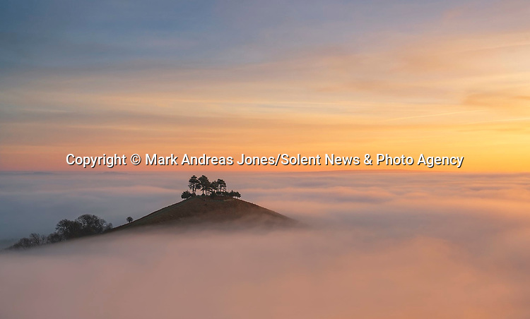 """Pictured: A hilltop resembles a floating island on a sea of fog.   Crowned by a few pine trees, Colmer's Hill, near Bridport, Dorset, is the only land to rise above the fog for miles around.<br /> <br /> Photographer Mark Andreas Jones captured the evocative shots of the 417ft high hill as the area was engulfed by mist and frost on Sunday morning.   The 49 year old from Portsmouth, Hants, said: """"This is the best cloud inversion I have ever seen at this location and, coupled with the beautiful sunrise, it made for a very special morning. SEE OUR COPY FOR DETAILS<br /> <br /> Please byline: Mark Andreas Jones/Solent News<br /> <br /> © Mark Andreas Jones/Solent News & Photo Agency<br /> UK +44 (0) 2380 458800"""