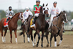 September 21, 2013.  Pennsylvania Derby contender Fury Kapcori, Mike Smith up; trained by Jerry Hollendorfer. Will Take Charge, trained by D. Wayne Lukas and ridden by Luis Saez, wins the Pennsylvania Derby at  Parx Racing, Bensalem, PA.  ©Joan Fairman Kanes/Eclipse Sportswire