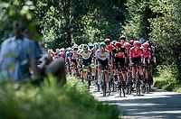peloton led by Thomas De Gendt (BEL/Lotto Soudal)<br /> <br /> 17th Benelux Tour 2021<br /> Stage 5 from Riemst to Bilzen (BEL/192km)<br /> <br /> ©kramon
