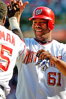 5 September 2005: Livan Hernandez, All-Star pitcher for the Washington Nationals, is greeted by teammate Cristian Guzman as Hernandez crossing the plate to score a run in a game against the Florida Marlins. The Nationals defeated the Marlins 5-2 at RFK Stadium in Washington, DC, maintaining a close race for the NL Wildcard spot. Mandatory Photo Credit: Ed Wolfstein.