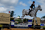 October 17, 2021: Emily Hamel (USA), aboard Corvett, competes during the Stadium Jumping Final at the 5* level during the Maryland Five-Star at the Fair Hill Special Event Zone in Fair Hill, Maryland on October 17, 2021. Jon Durr/Eclipse Sportswire/CSM